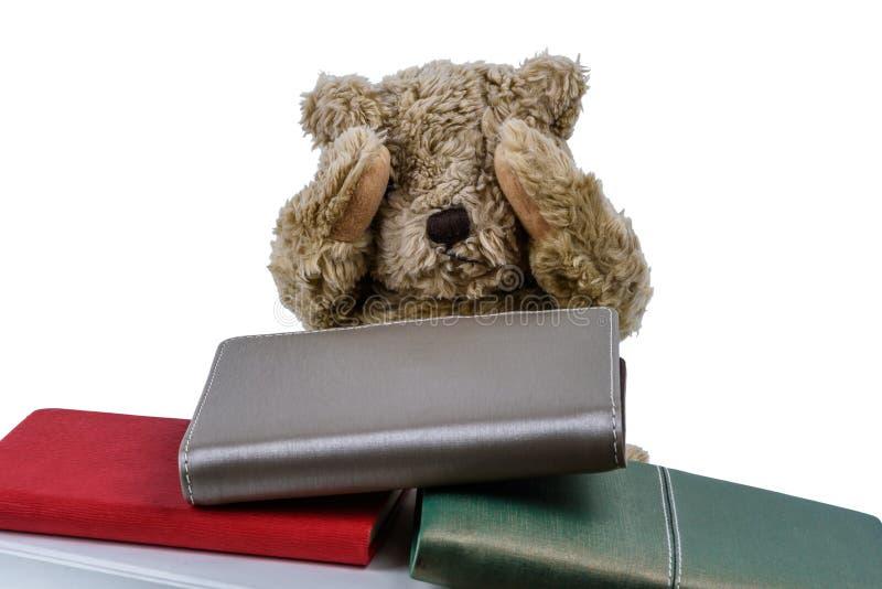 Boneca bonito do urso marrom com muitos livros isolados no fundo branco fotos de stock royalty free