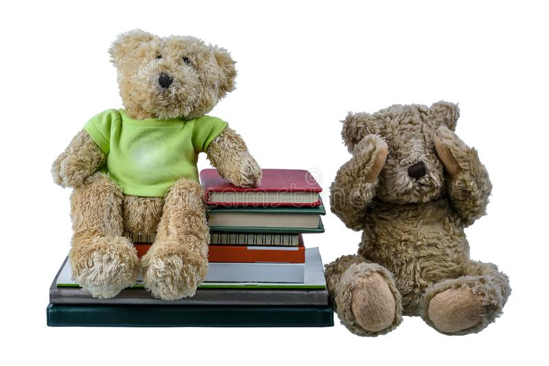 Boneca bonito do urso marrom com muitos livros isolados no fundo branco foto de stock