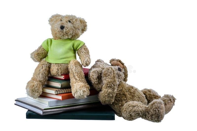 Boneca bonito do urso marrom com muitos livros isolados no fundo branco imagem de stock royalty free