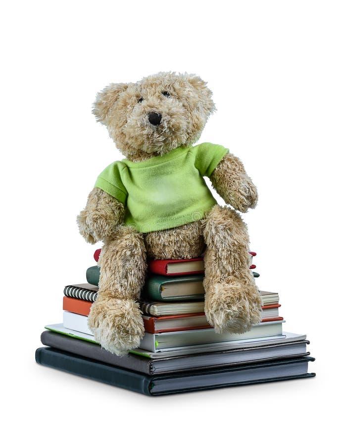 Boneca bonito do urso marrom que senta-se em muitos livros isolados no fundo branco imagem de stock royalty free