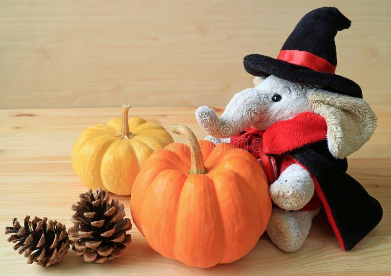 Boneca do elefante no traje do feiticeiro com um par de abóboras maduras da cor vívida e de dois cones do pinho na tabela de made foto de stock