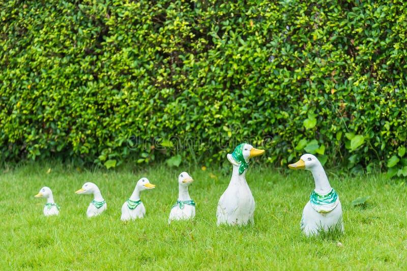 Boneca do pato da família no jardim tail?ndia foto de stock