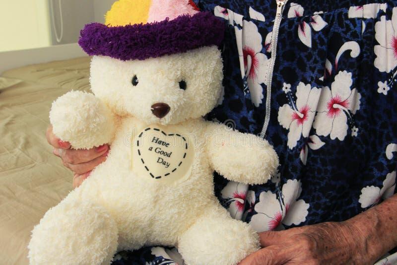 Boneca do urso da terra arrendada da mulher adulta fotografia de stock