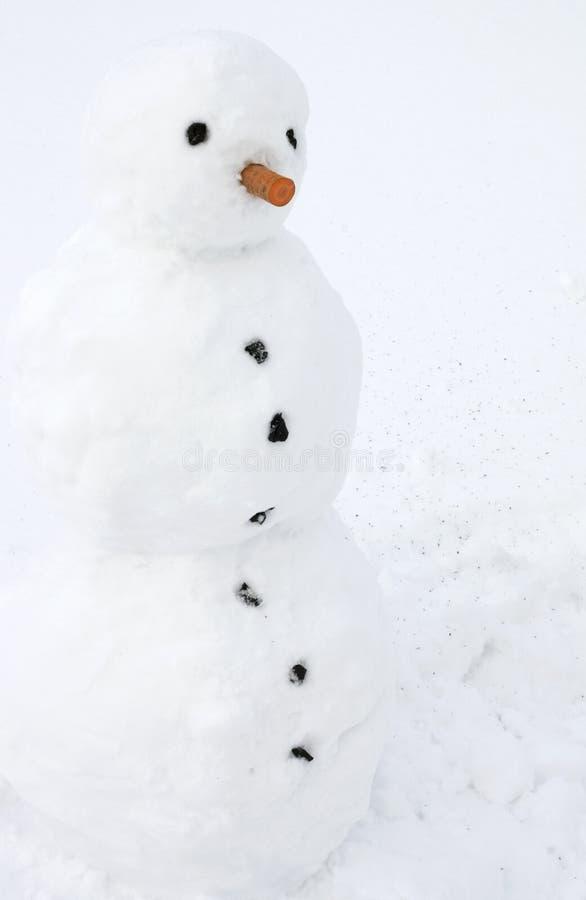 Download Boneco de neve imagem de stock. Imagem de divertimento - 12810017