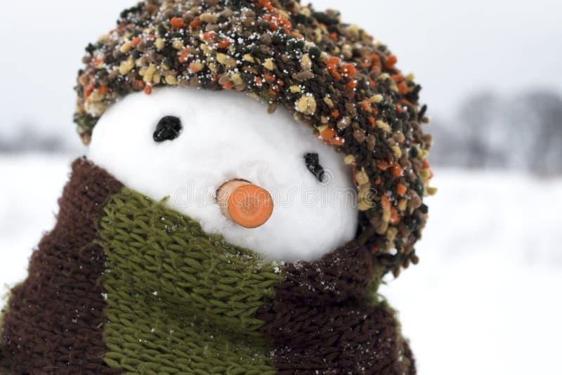 Download Boneco de neve imagem de stock. Imagem de humor, scarf - 12810139