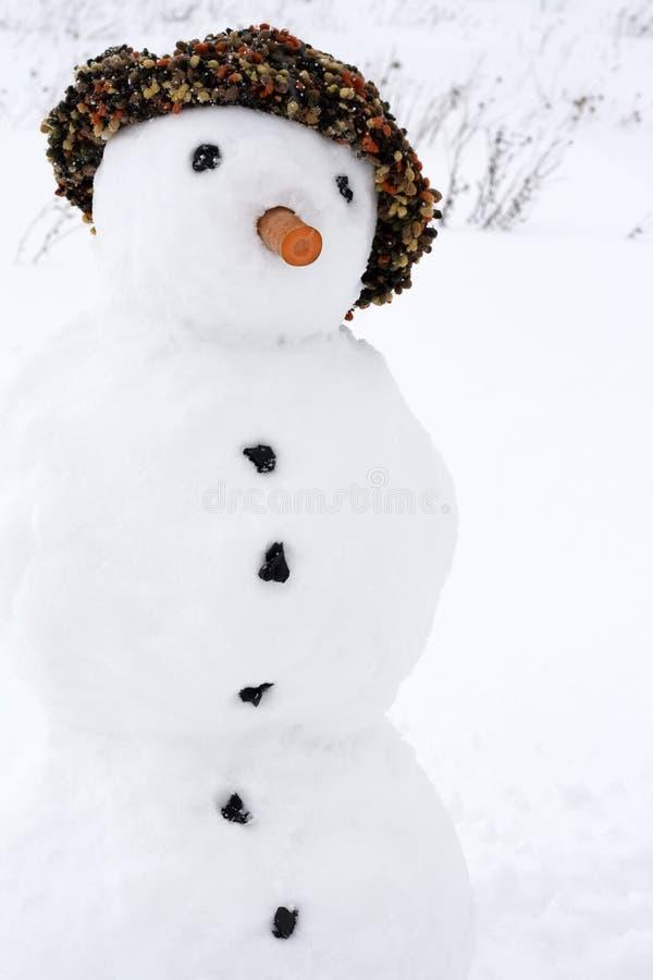 Download Boneco de neve foto de stock. Imagem de divertimento - 12810176
