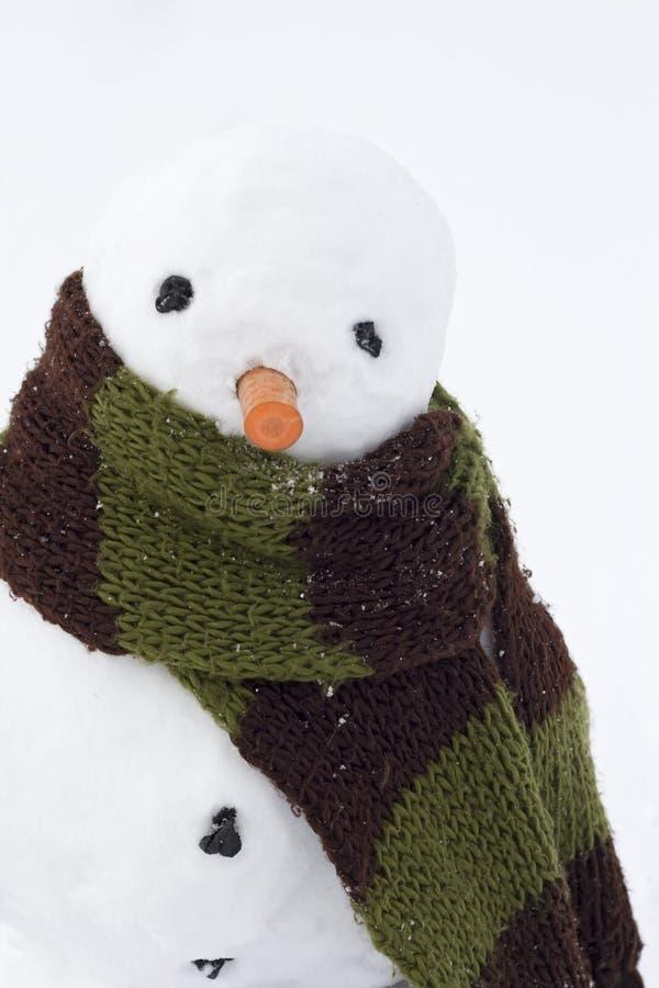 Download Boneco de neve foto de stock. Imagem de outdoors, homem - 12810238