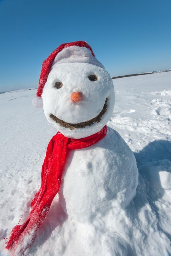 Boneco de neve fotografia de stock royalty free