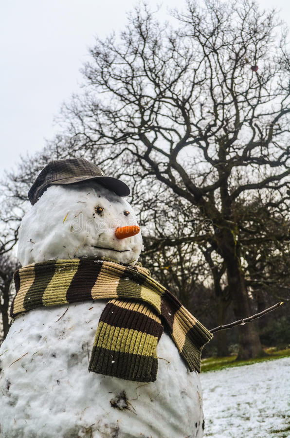 Boneco de neve foto de stock royalty free