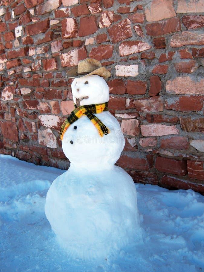 Boneco de neve do vaqueiro imagens de stock