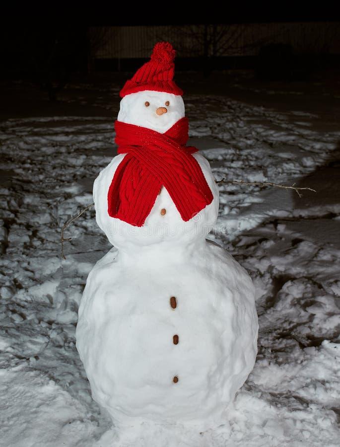 Boneco de neve feliz na noite imagens de stock royalty free
