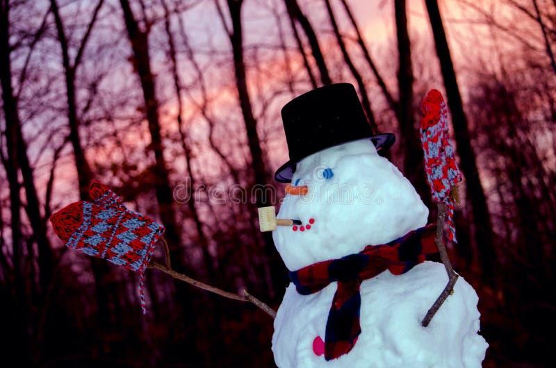 Boneco de neve no por do sol fotografia de stock royalty free