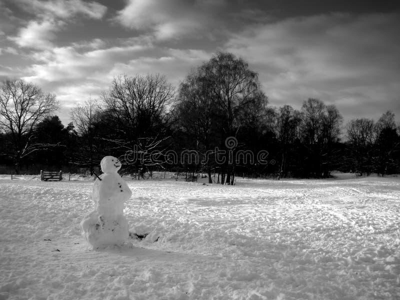 Boneco de neve preto e branco fotos de stock