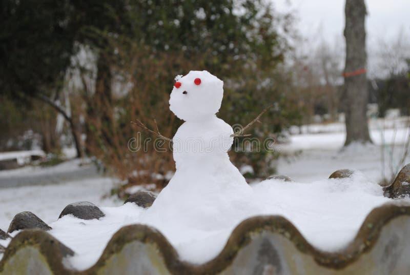 Boneco de neve que banha-se no banho do p?ssaro fotografia de stock royalty free