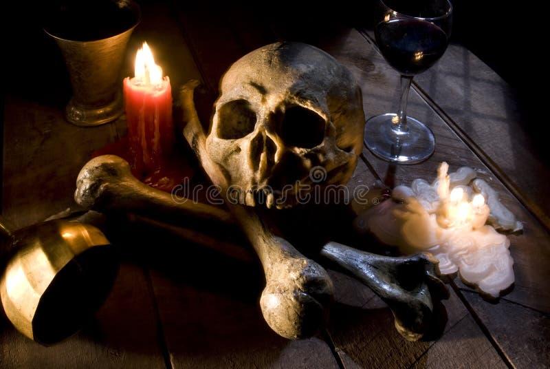 bones череп стоковые фотографии rf