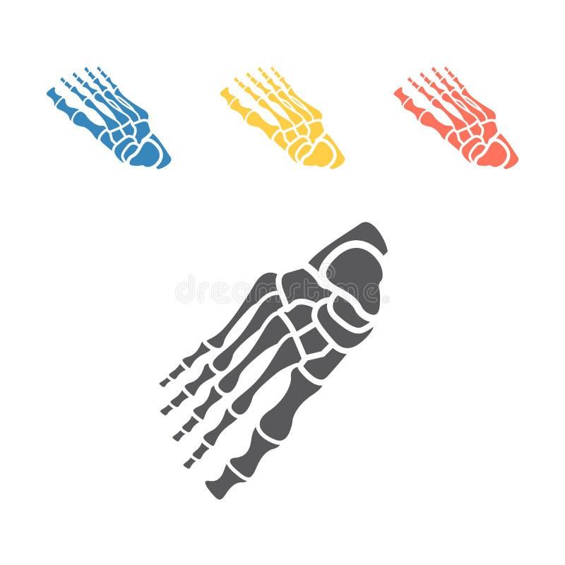 Bones of foot. Skeleton part. Vector signs for web graphics. Bones of foot. Skeleton part. Vector signs for web graphics vector illustration