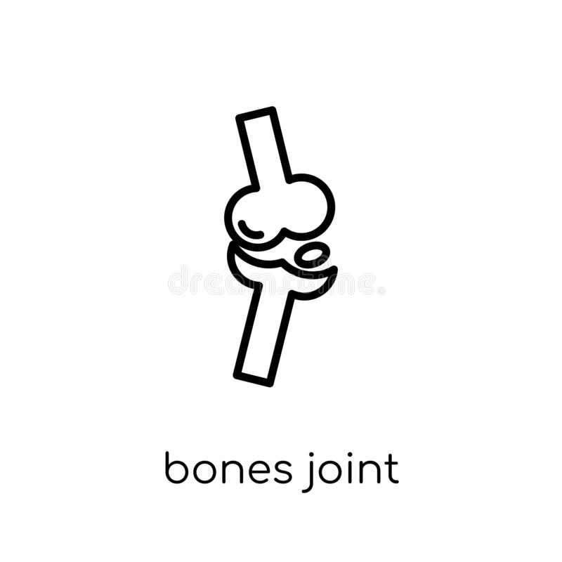 Bones Joint icon. Trendy modern flat linear vector Bones Joint i vector illustration