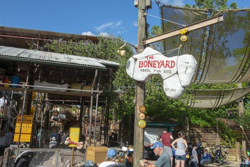 Boneyard, Disney WOrld, Animal Kingdom, Travel. Boneyard playground in the Animal Kingdom at Walt Disney World outside of Orlando, FL. Florida is a popular stock images