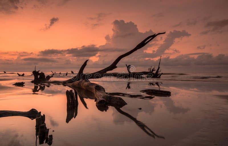 Boneyard strandsoluppgång arkivfoto