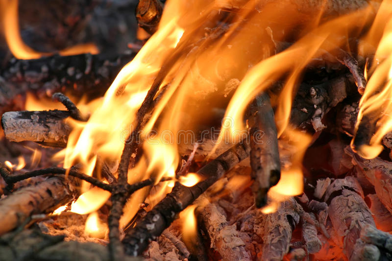 Bonfire Stock Image