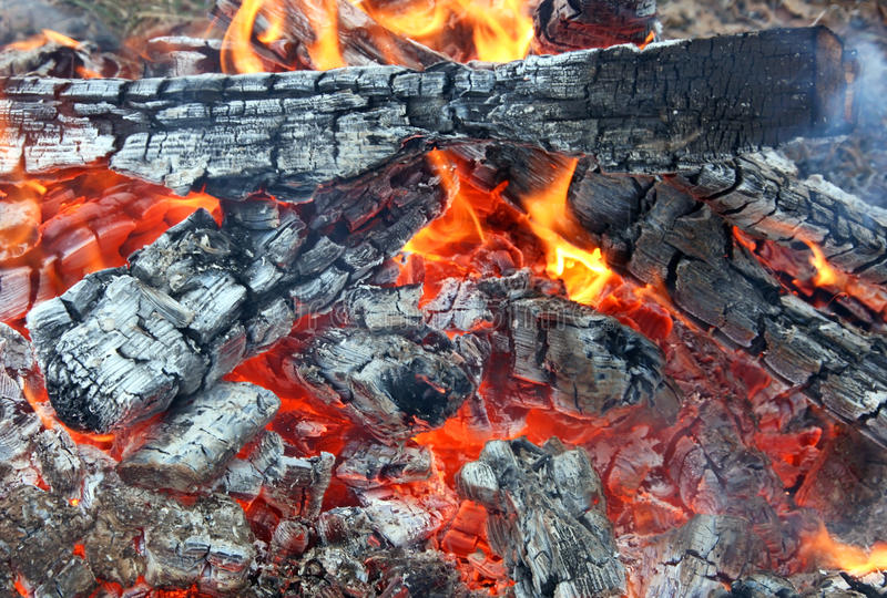 Download Bonfire stock photo. Image of incinerate, warm, charred - 18032418