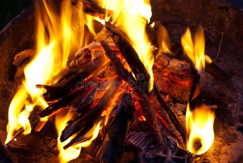 bonfire fotos de stock royalty free