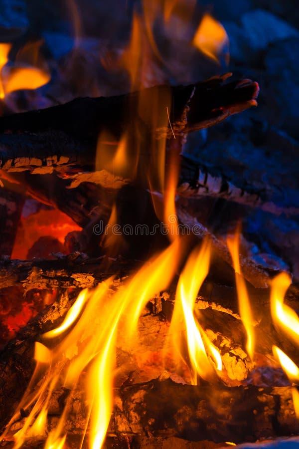 bonfire imagens de stock royalty free