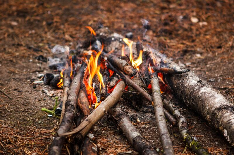 Bonfire in autumn forest. Family weekend. royalty free stock photography