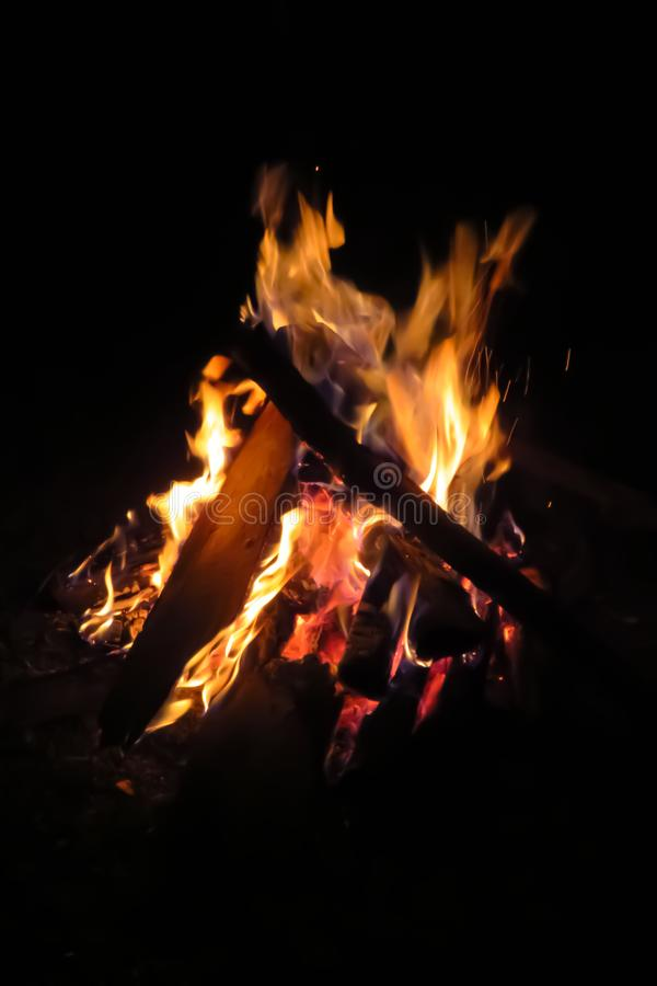 Bonfire burning in the night. Bonfire in the night, wood burning, orange flames against black background royalty free stock image