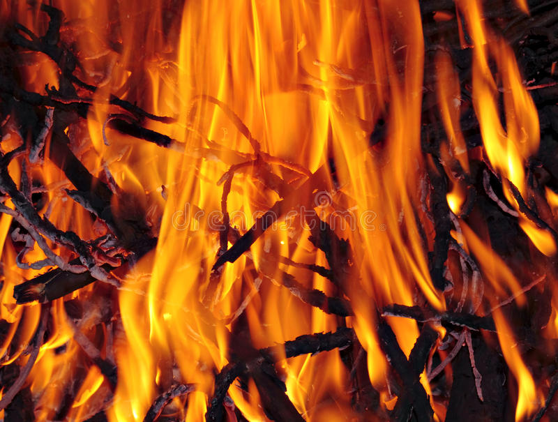 Download Bonfire close up stock image. Image of flames, glow, fireplace - 13556013