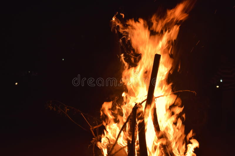 Bonfire stock photo