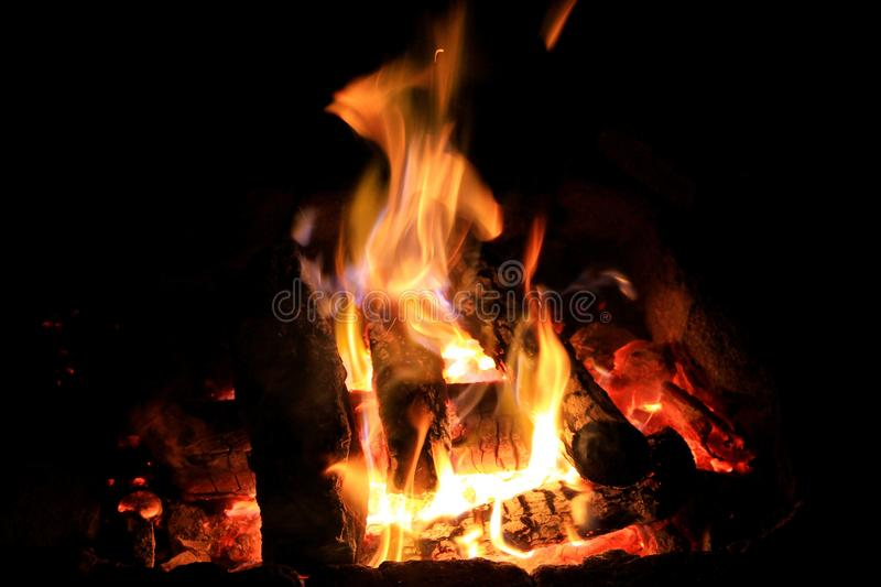 Bonfire in the darkness of the night stock photo
