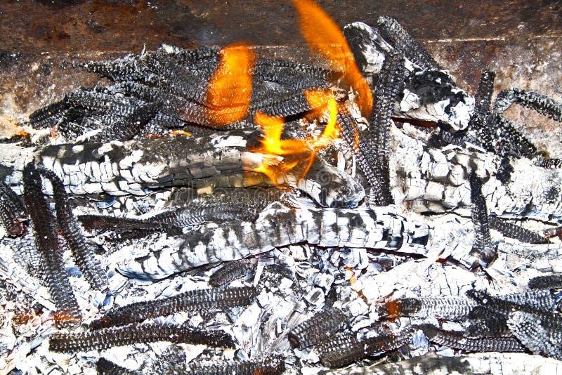 Bonfire, feche imagens de stock