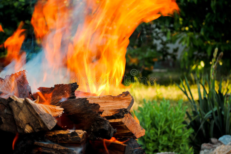 Bonfire fire on wood logs in a barbecue on the grass background royalty free stock images