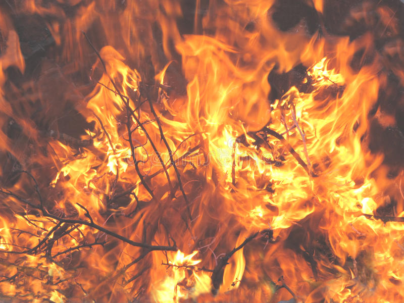 Bonfire Flames Close-up Royalty Free Stock Images