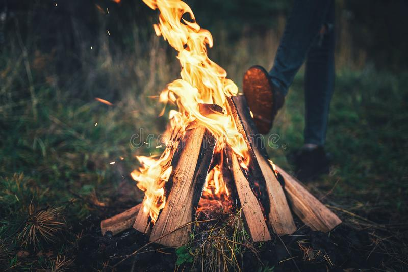 Bonfire in the forest with girl warming up behind. royalty free stock images