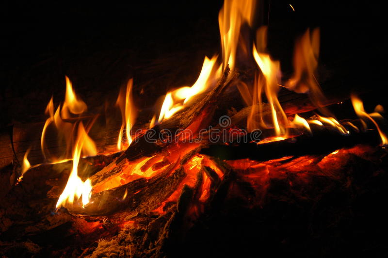 A bonfire royalty free stock photo