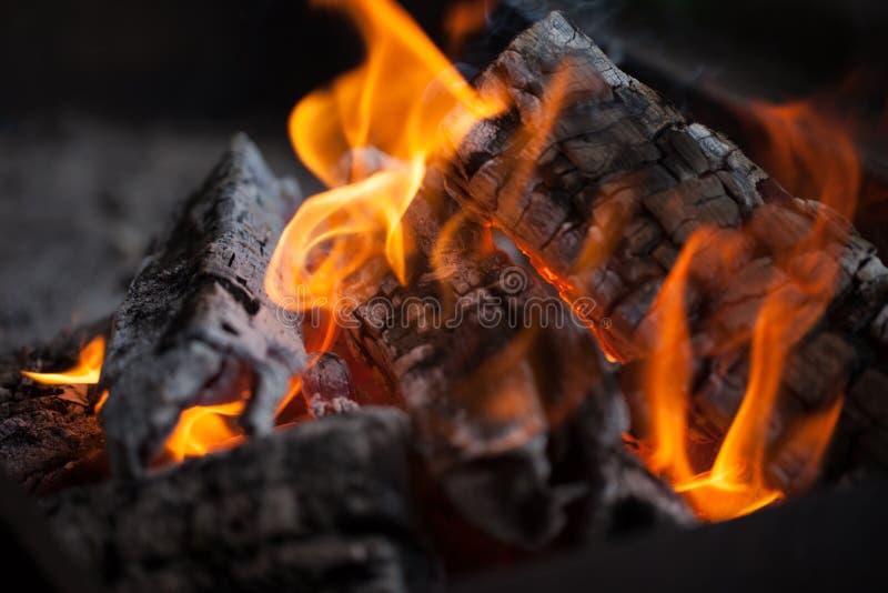 bonfire Madeira do incêndio Grelhando e cozinhando o fogo Woodfire com chamas fotos de stock