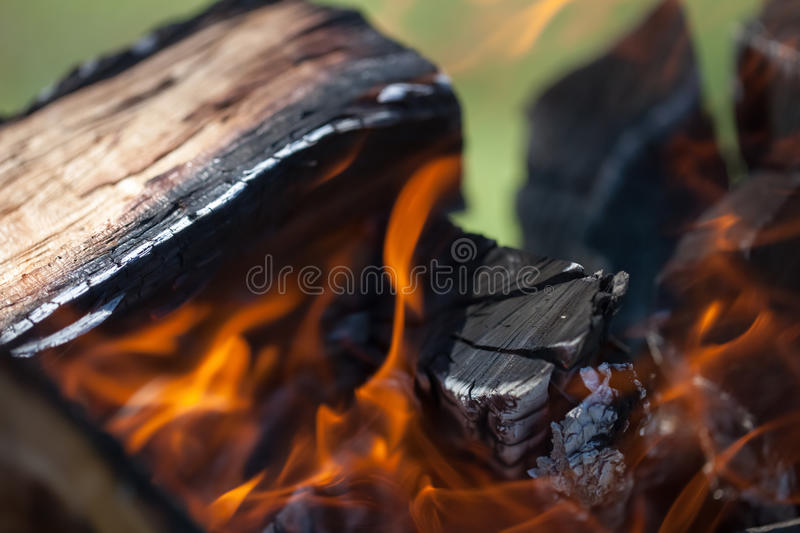 Bonfire on the nature. Bonfire, wood and fire in the camp on the nature of the close-up stock image