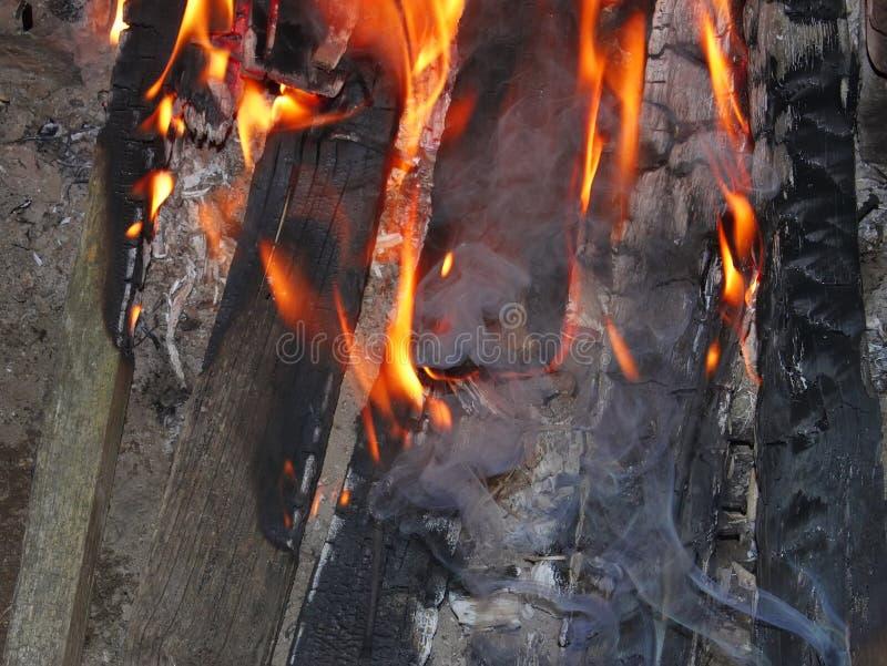 Bonfire at night stock photography