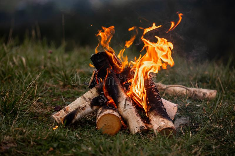 Bonfire. Orange flame of a fire. Bonfire on the grill with smoke. Bonfire background. campfire surrounded stock photo