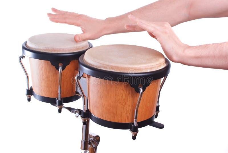 Bongo. Men's hands play Bongo on a white background royalty free stock photos