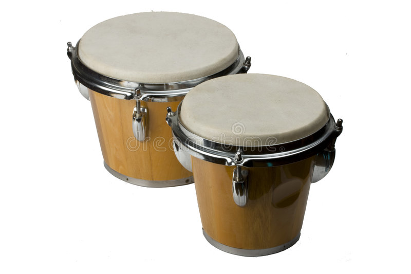 Bongo. Dual bongo instrument on white background stock photography