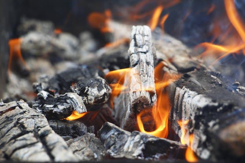 bongos Πορτοκαλιά φλόγα μιας πυρκαγιάς Καίγοντας δέντρο σημύδων στην εστία στοκ φωτογραφία με δικαίωμα ελεύθερης χρήσης