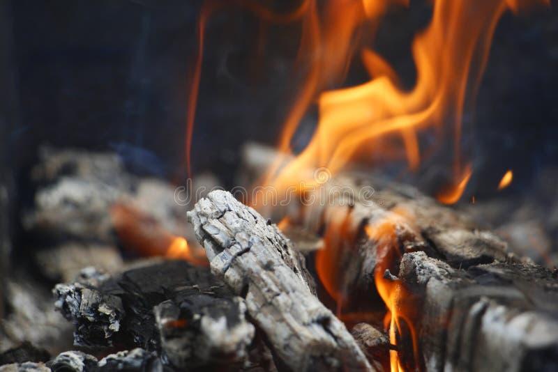 bongos Πορτοκαλιά φλόγα μιας πυρκαγιάς Καίγοντας δέντρο σημύδων στην εστία στοκ εικόνες