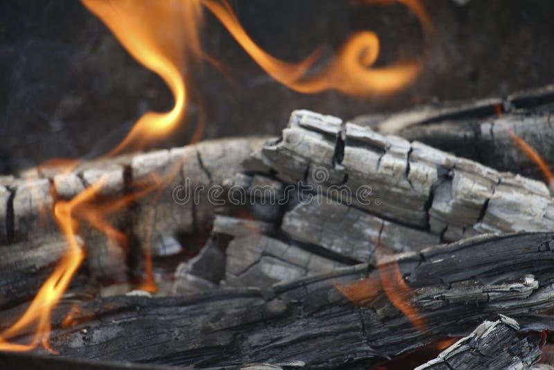 bongos Πορτοκαλιά φλόγα μιας πυρκαγιάς Καίγοντας δέντρο σημύδων στην εστία στοκ φωτογραφίες με δικαίωμα ελεύθερης χρήσης
