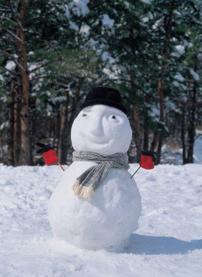 Bonhomme de neige avec le chapeau photo libre de droits