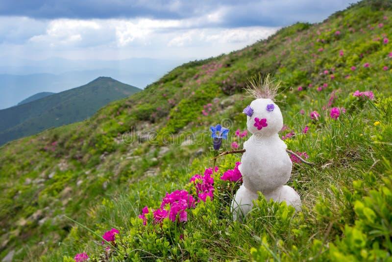 Bonhomme de neige avec une fleur sur un pré alpin de floraison image stock