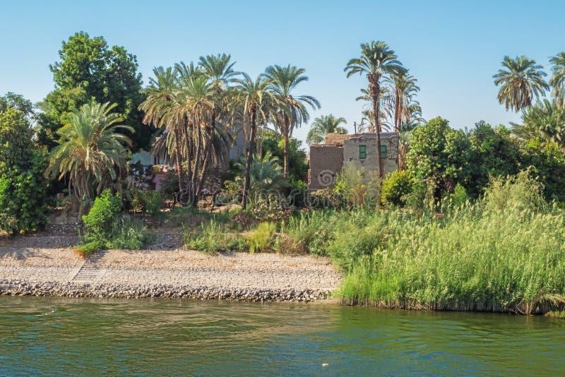 Boning nästan kusterna av Nilen royaltyfria foton