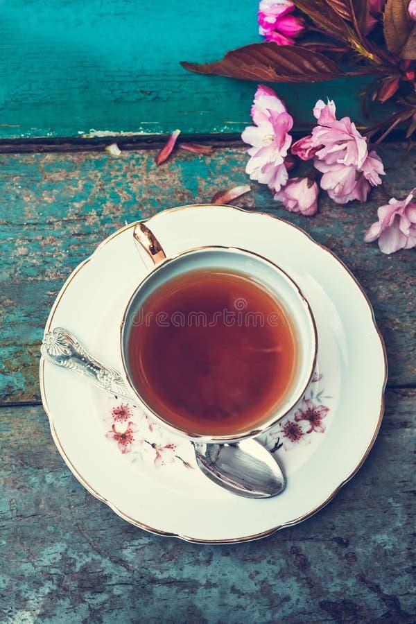 Bonita, inglês, a xícara de chá do vintage com a árvore de cereja japonesa floresce, fecha-se acima fotografia de stock